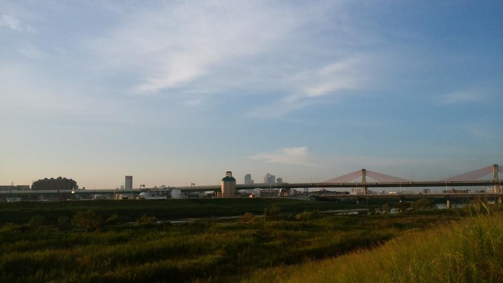 庄内緑地公園:13