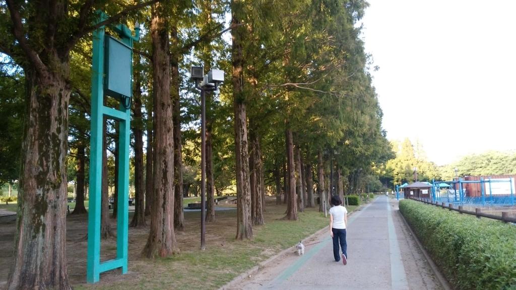 ペットと遊ぶ:庄内緑地公園: