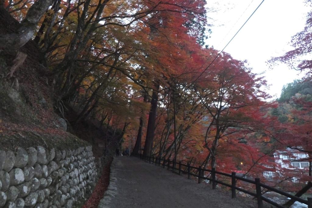 香嵐渓:紅葉トンネル