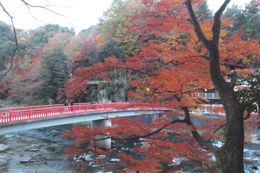 香嵐渓:紅葉と川