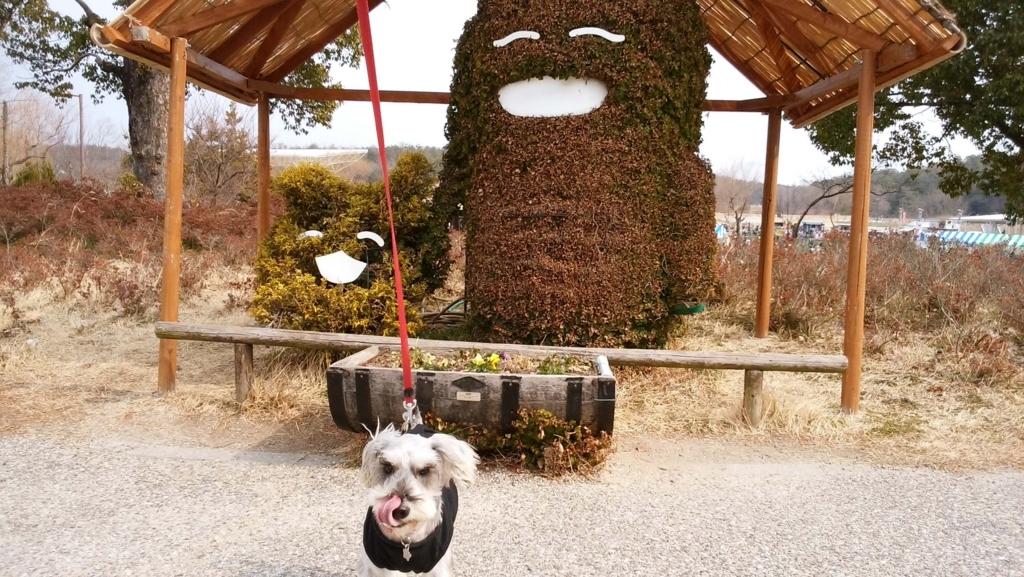 愛知県:ペット:モリコロパーク