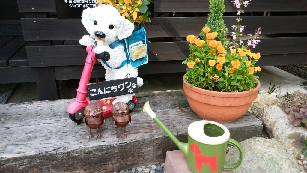 ドッグカフェ:恵那市フェリーチェ:看板犬