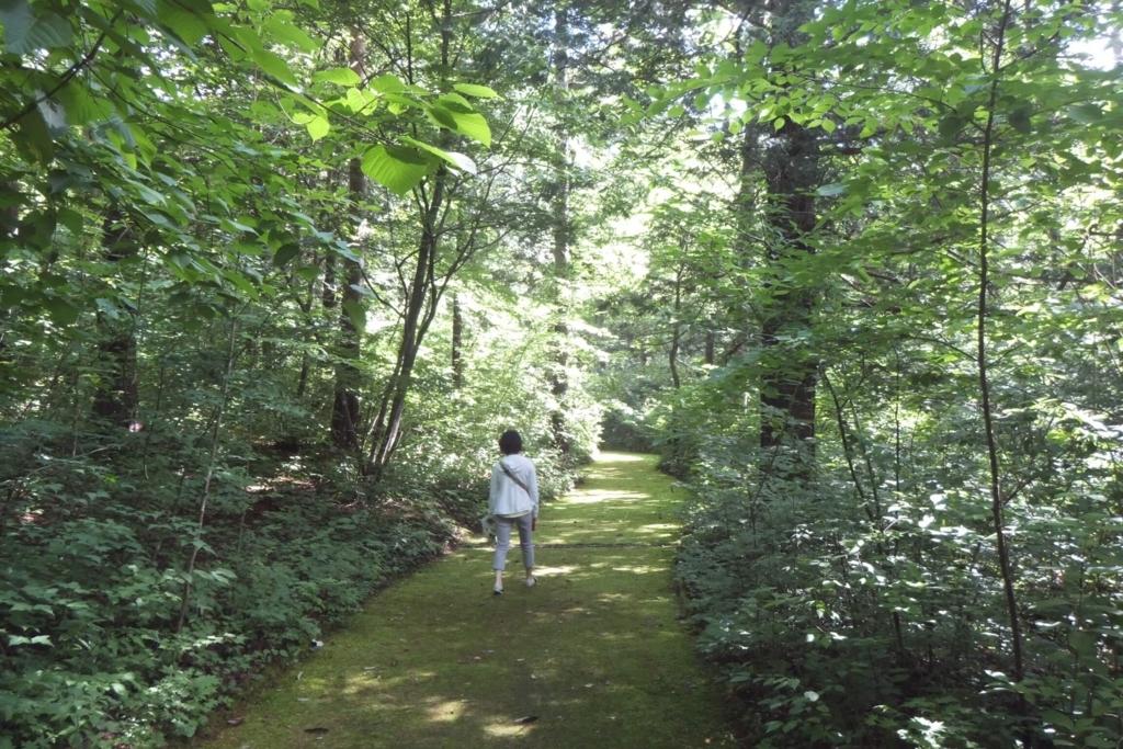 安曇野:烏川渓谷緑地 森林エリア 道