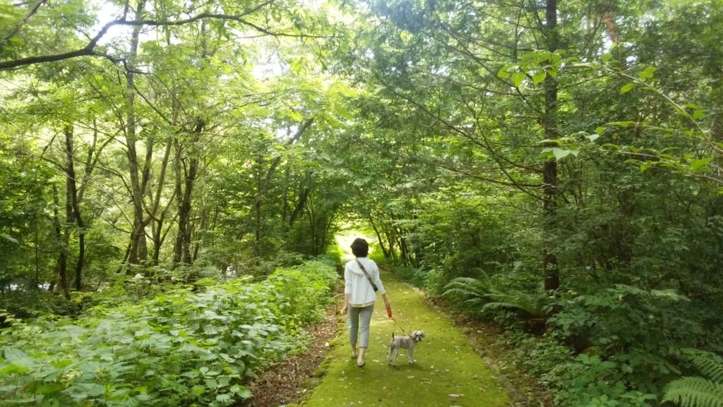 ペットと遊ぶ:烏川渓谷緑地