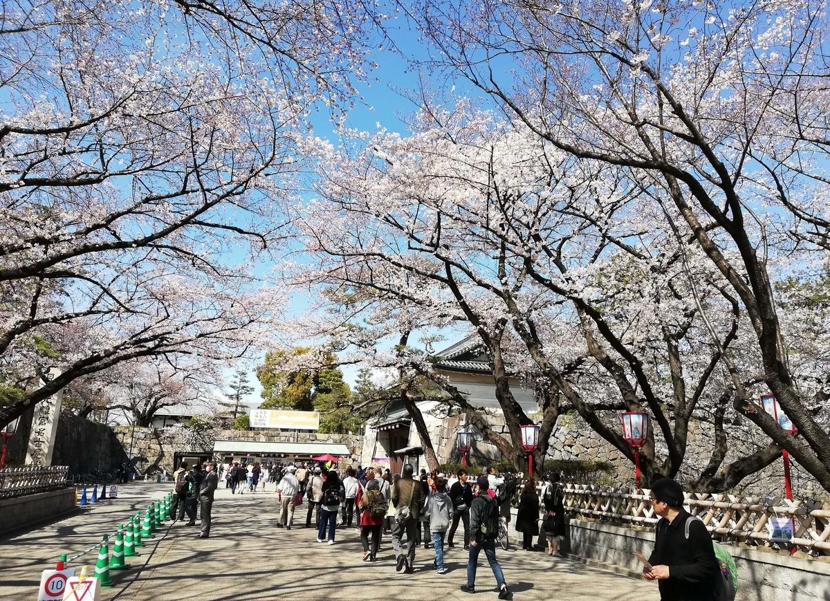 愛知県内でペットと遊ぶ:名古屋城桜まつり 正門前