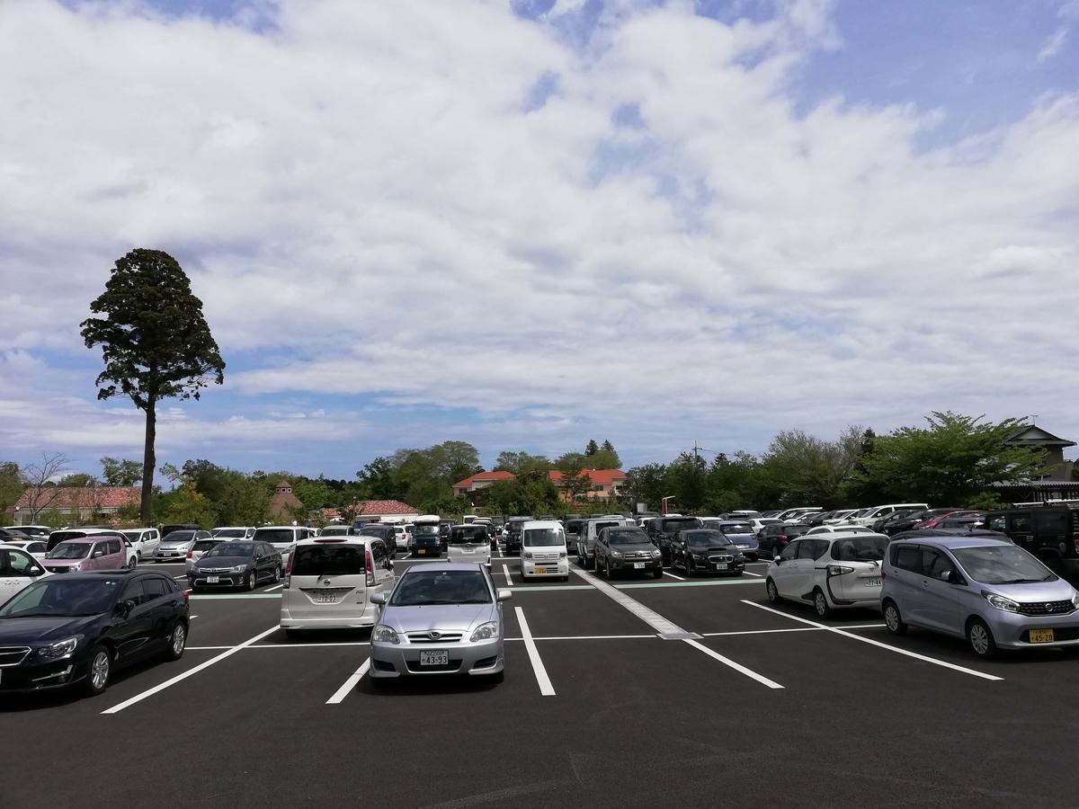 千葉県八街市:小谷流の里ドギーズアイランド 大型駐車場