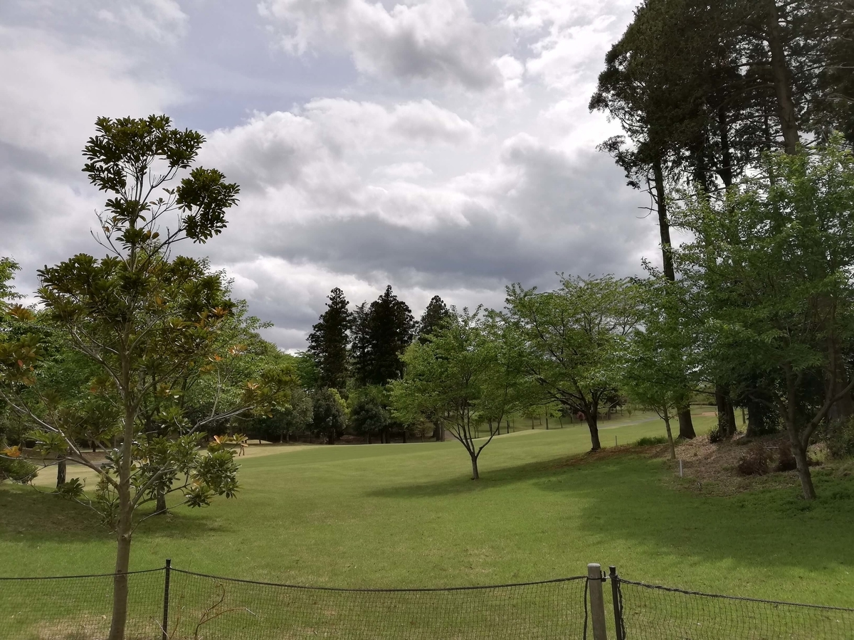 千葉県八街市:小谷流の里ドギーズアイランド ゴルフ場