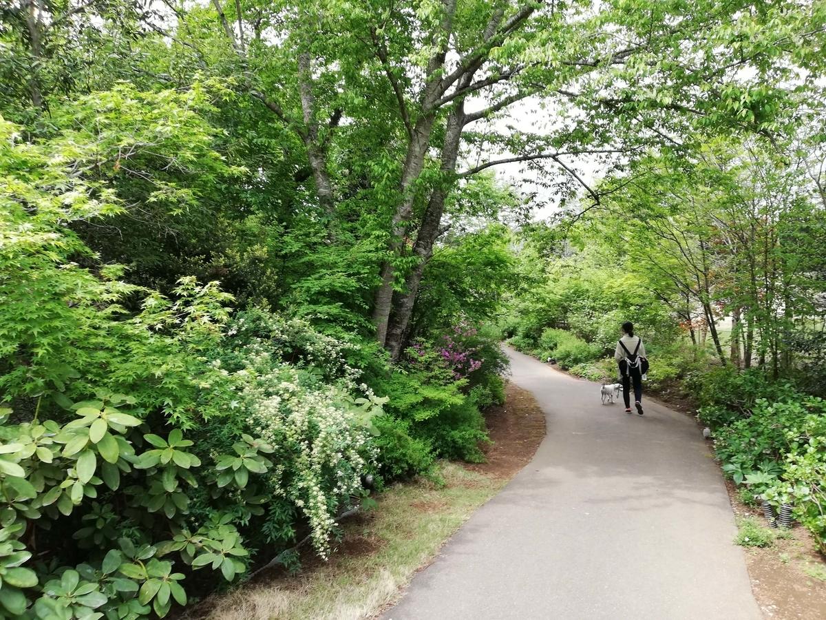 千葉県八街市:小谷流の里ドギーズアイランド 四季の花径 坂道