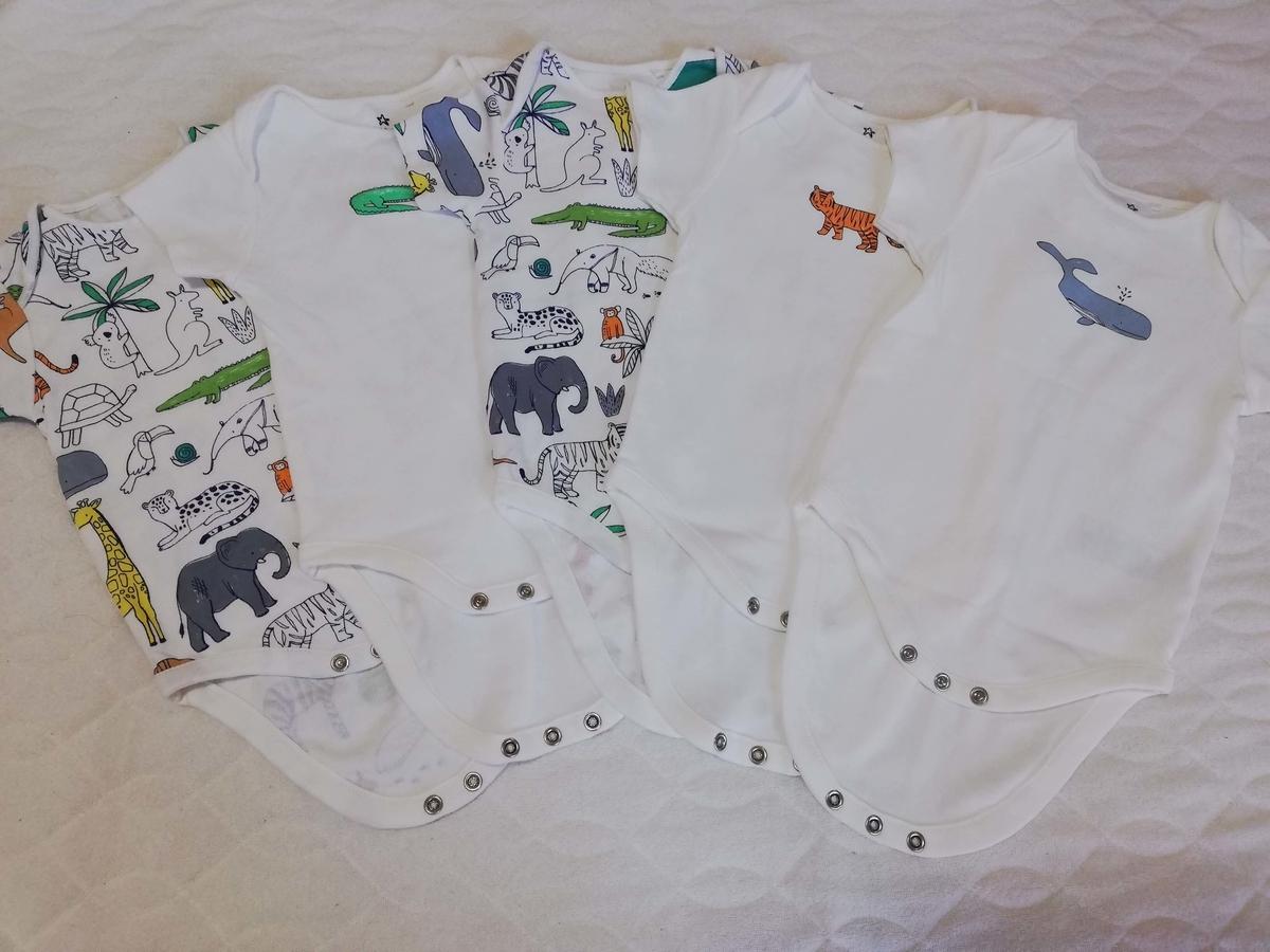 ベビー服:next 夏物 動物のデザイン シンプルデザイン