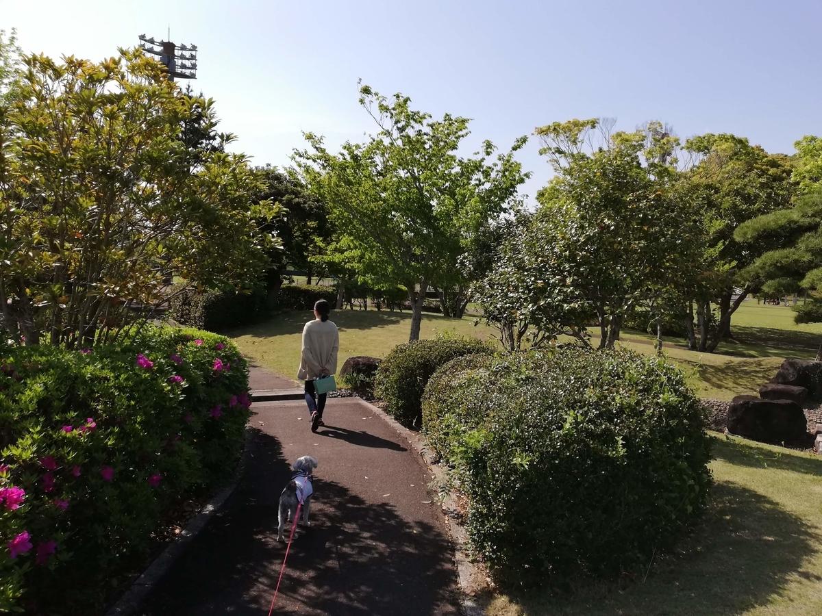 千葉県横芝光町:光スポーツ公園 公園内