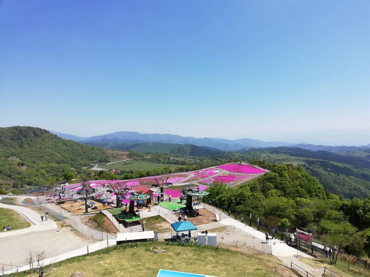 愛知県内でペットと遊ぶ:茶臼山高原 ペットと芝桜