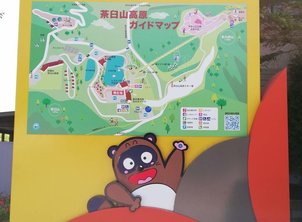 愛知県内でペットと遊ぶ:茶臼山高原 芝桜 ポンタ