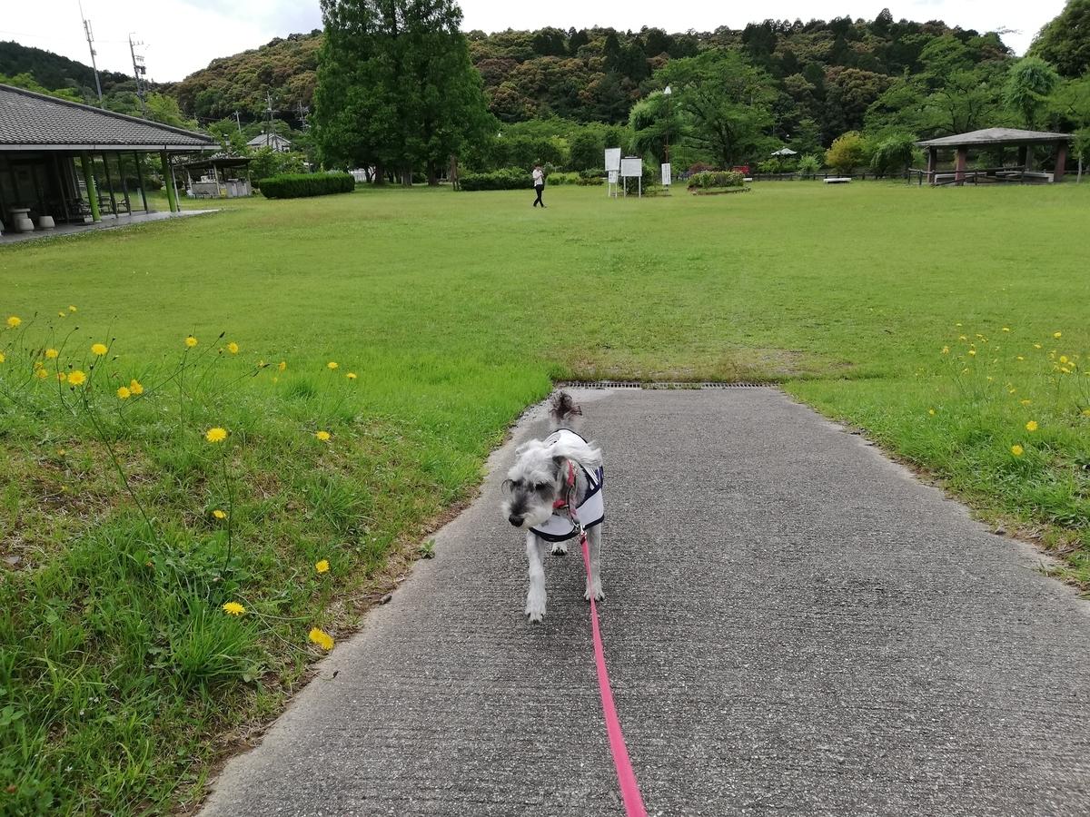 愛知県内でペットと遊ぶ:瀬戸市 定光寺公園 休憩所