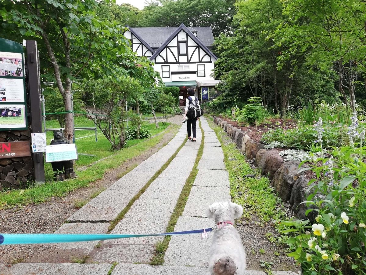山梨県内でペットと遊ぶ:北杜市 萌木の村