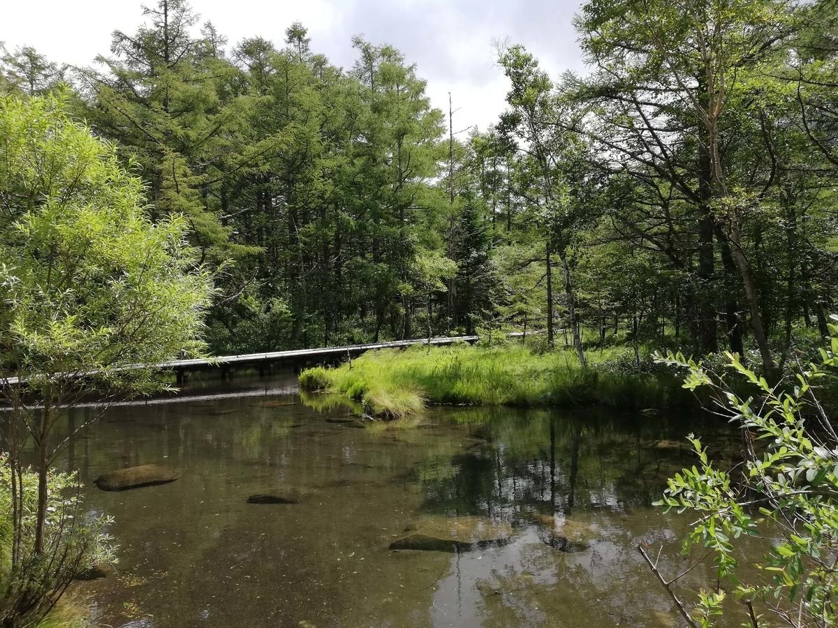 長野県内:ペットと遊ぶ 御泉水自然園 カラマツ池
