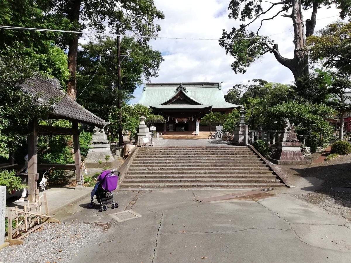 静岡県内でペットと遊ぶ:矢奈比賣神社 ペットと散策