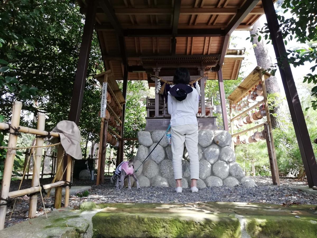静岡県内でペットと遊ぶ:霊犬神社とワンコ