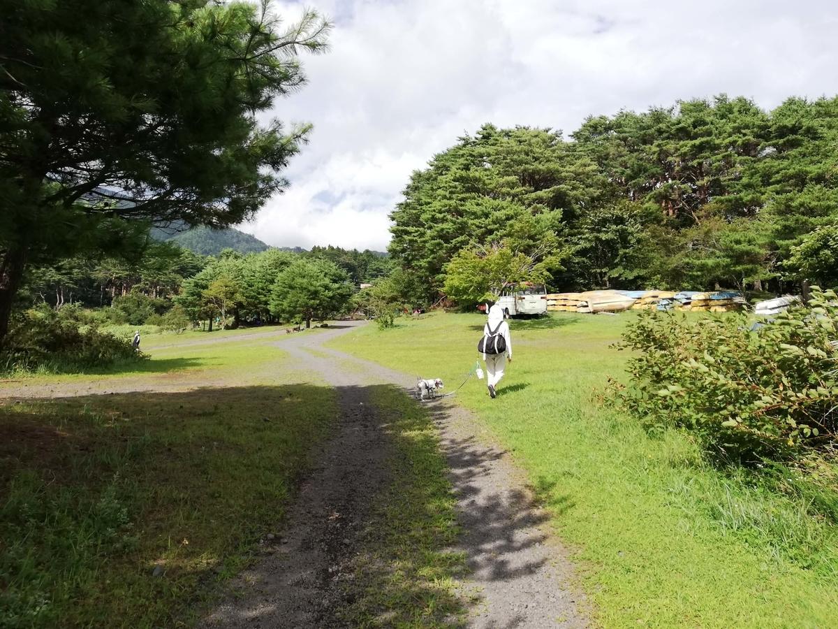 山梨県内でペットと遊ぶ:富士河口湖町 本栖湖  8月は暑い