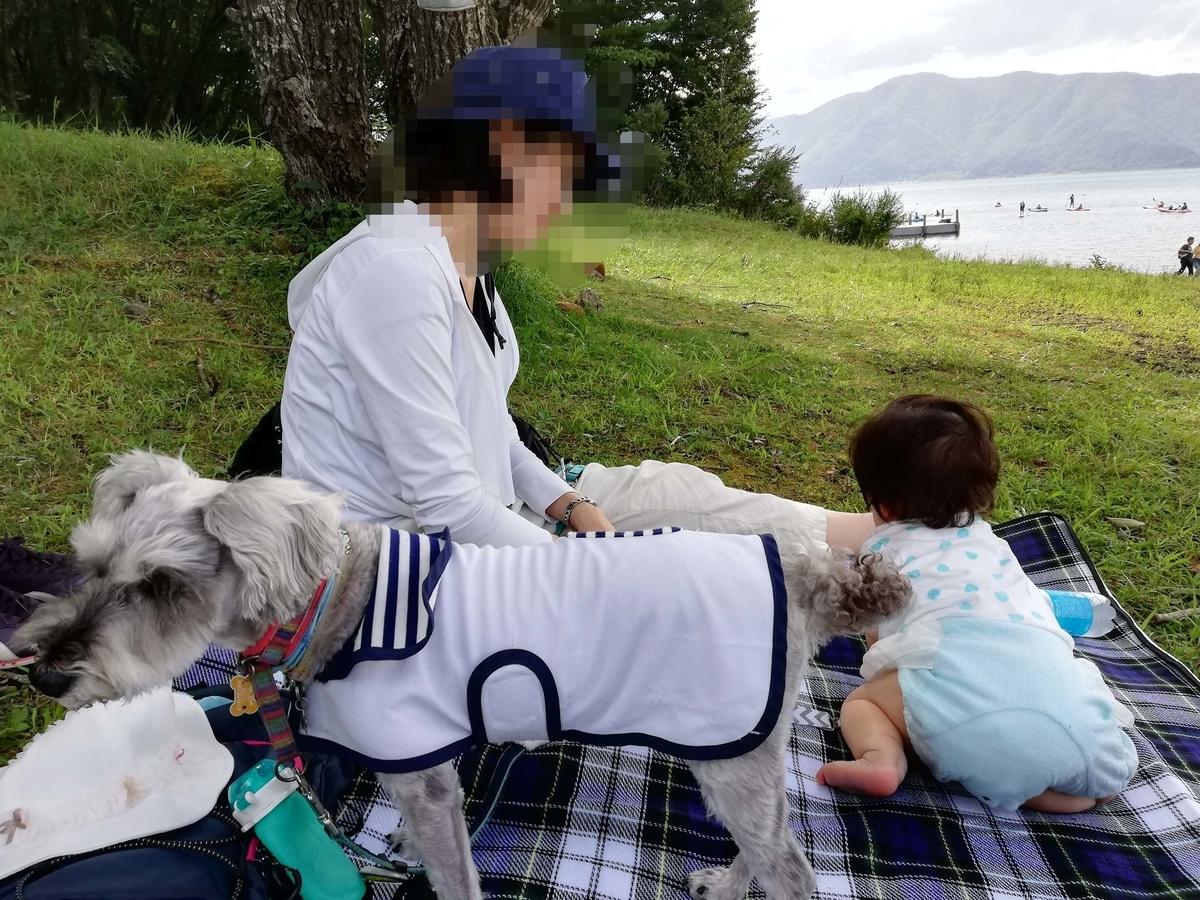 山梨県内でペットと遊ぶ:富士河口湖町 本栖湖 レジャーシートを敷いて一休み