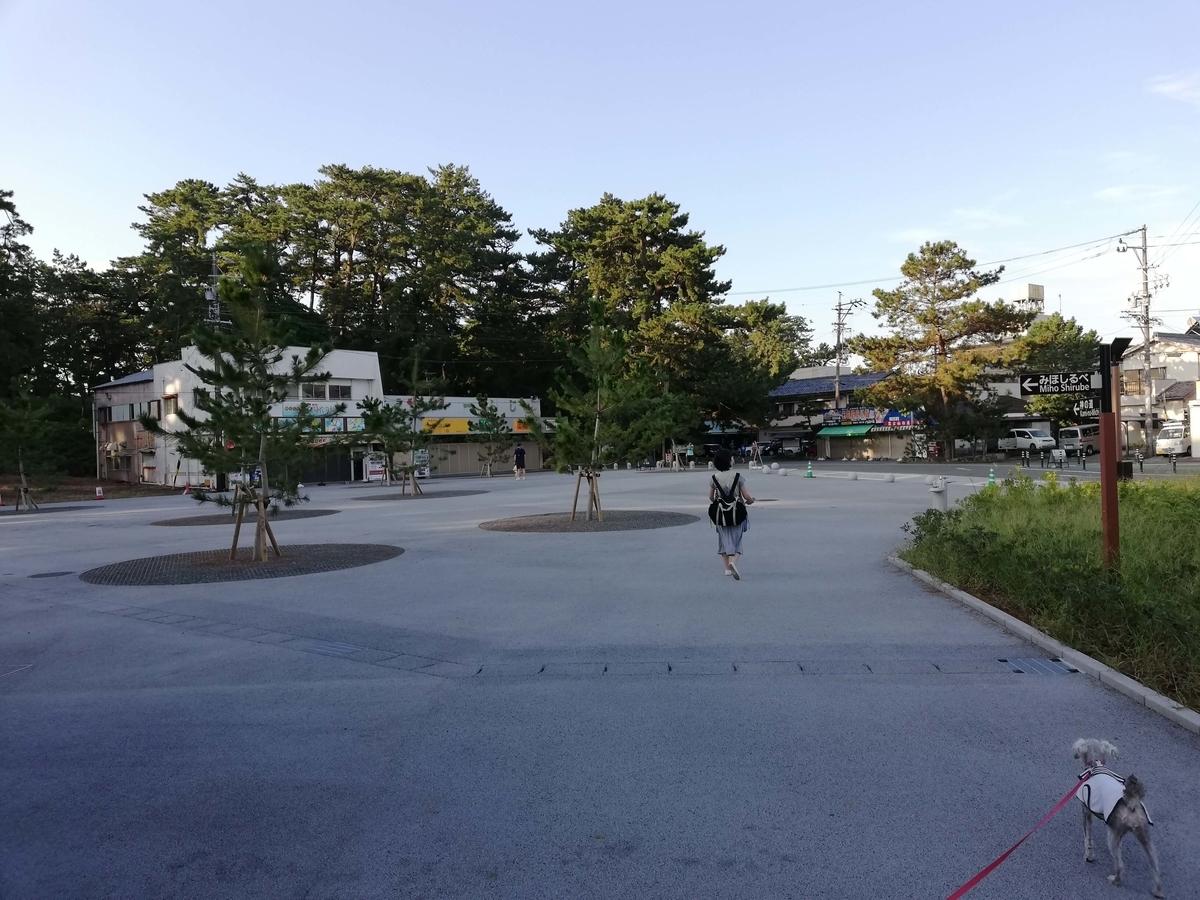 静岡県内でペットと遊ぶ:三保の松原 みほしらべ