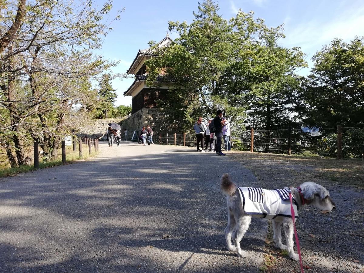 長野県内:ペットと遊ぶ 上田城跡公園