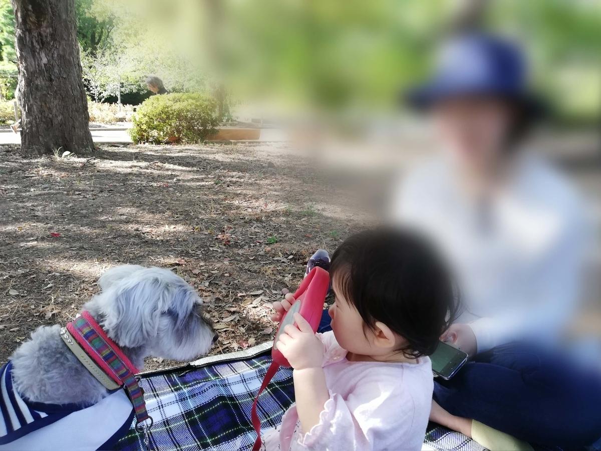 長野県内:ペットと遊ぶ 上田城跡公園 芝生内はペット禁止