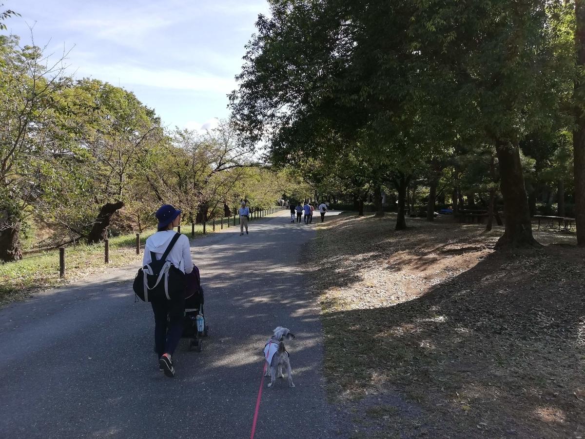 長野県内:ペットと遊ぶ 上田城跡公園 日陰で涼みながら散歩