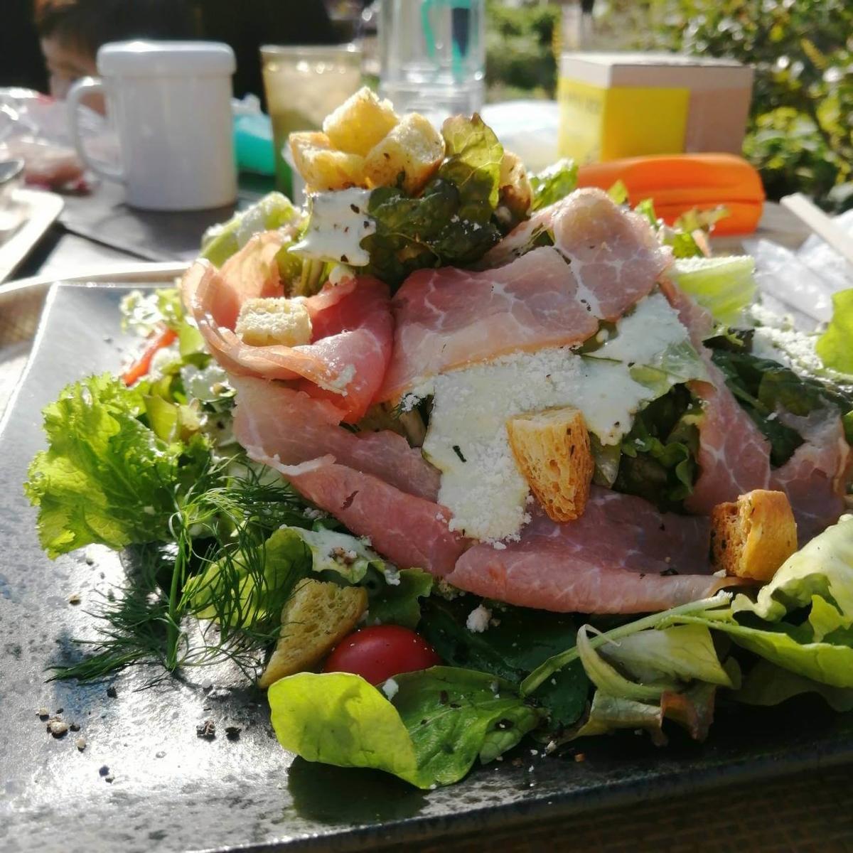 千葉県内でペットとお出かけ:大多喜ハーブガーデン レストランメニュー バジルDEサラダ