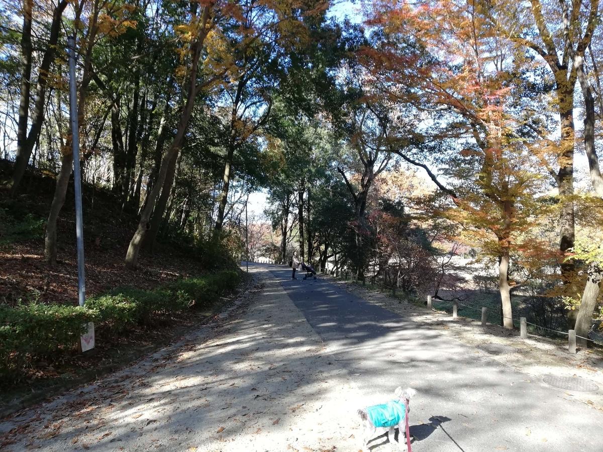 愛知県内でペットとお出かけ:愛知県森林公園 第一駐車場からのみちのり
