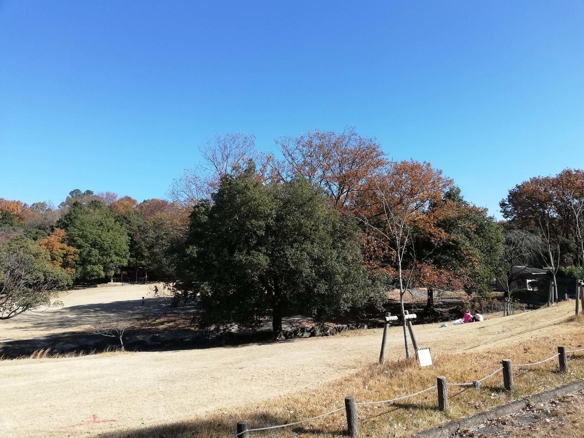 愛知県内でペットとお出かけ:愛知県森林公園 ピクニック