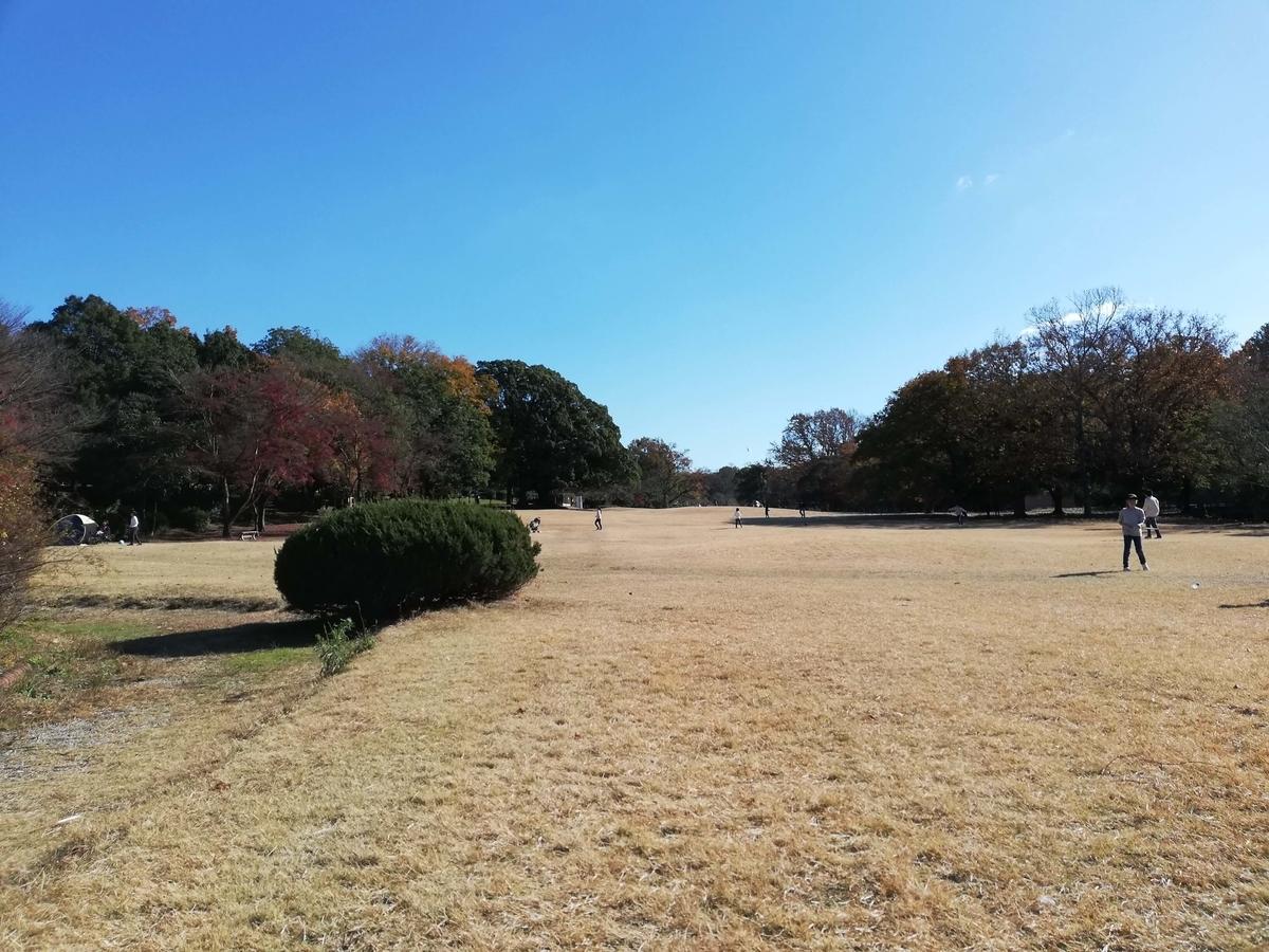 愛知県内でペットとお出かけ:愛知県森林公園 センター広場