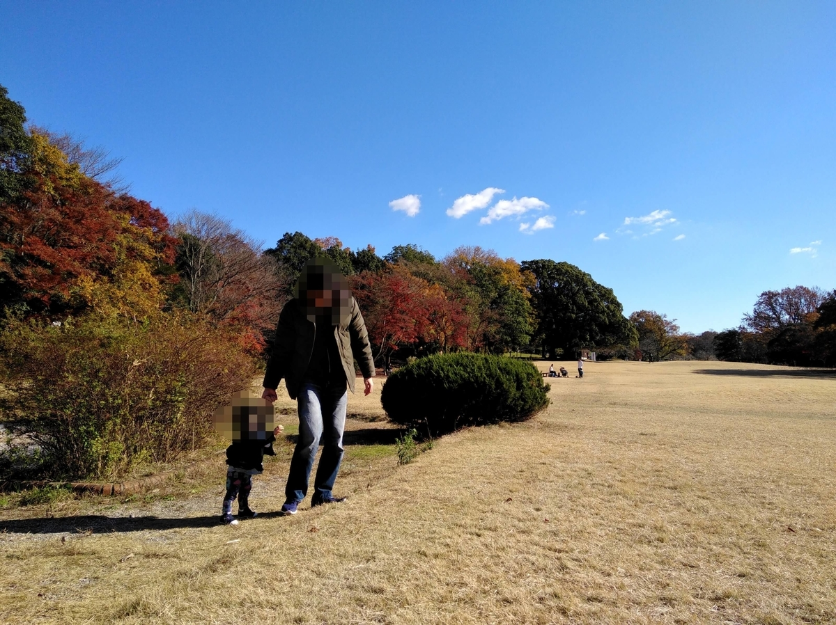 愛知県内でペットとお出かけ:愛知県森林公園 子どもと歩行練習