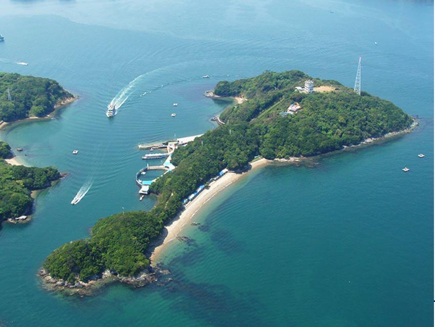三重県内でペットとお出かけ:イルカ島