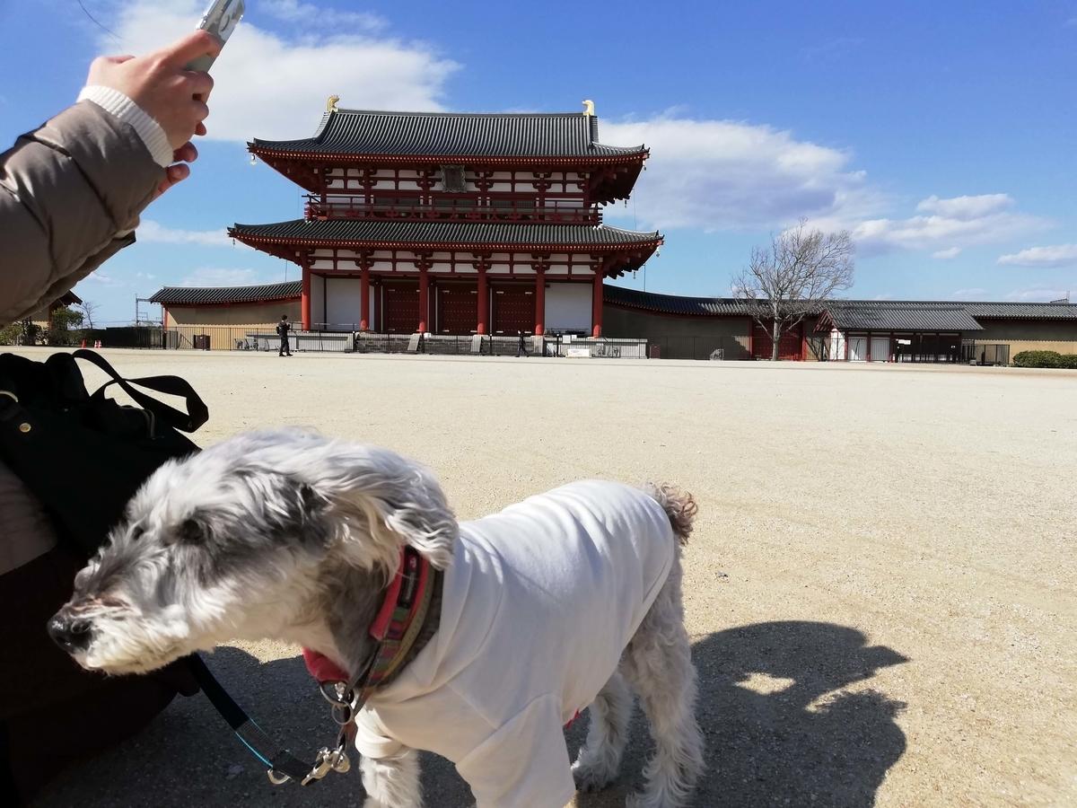奈良県内でペットとお出かけ:平城京跡 朱雀門