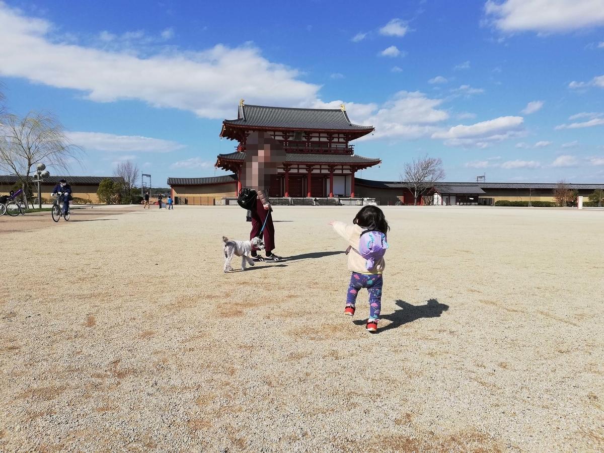 奈良県内でペットとお出かけ:平城京跡 朱雀門ひろば ワンコと散策