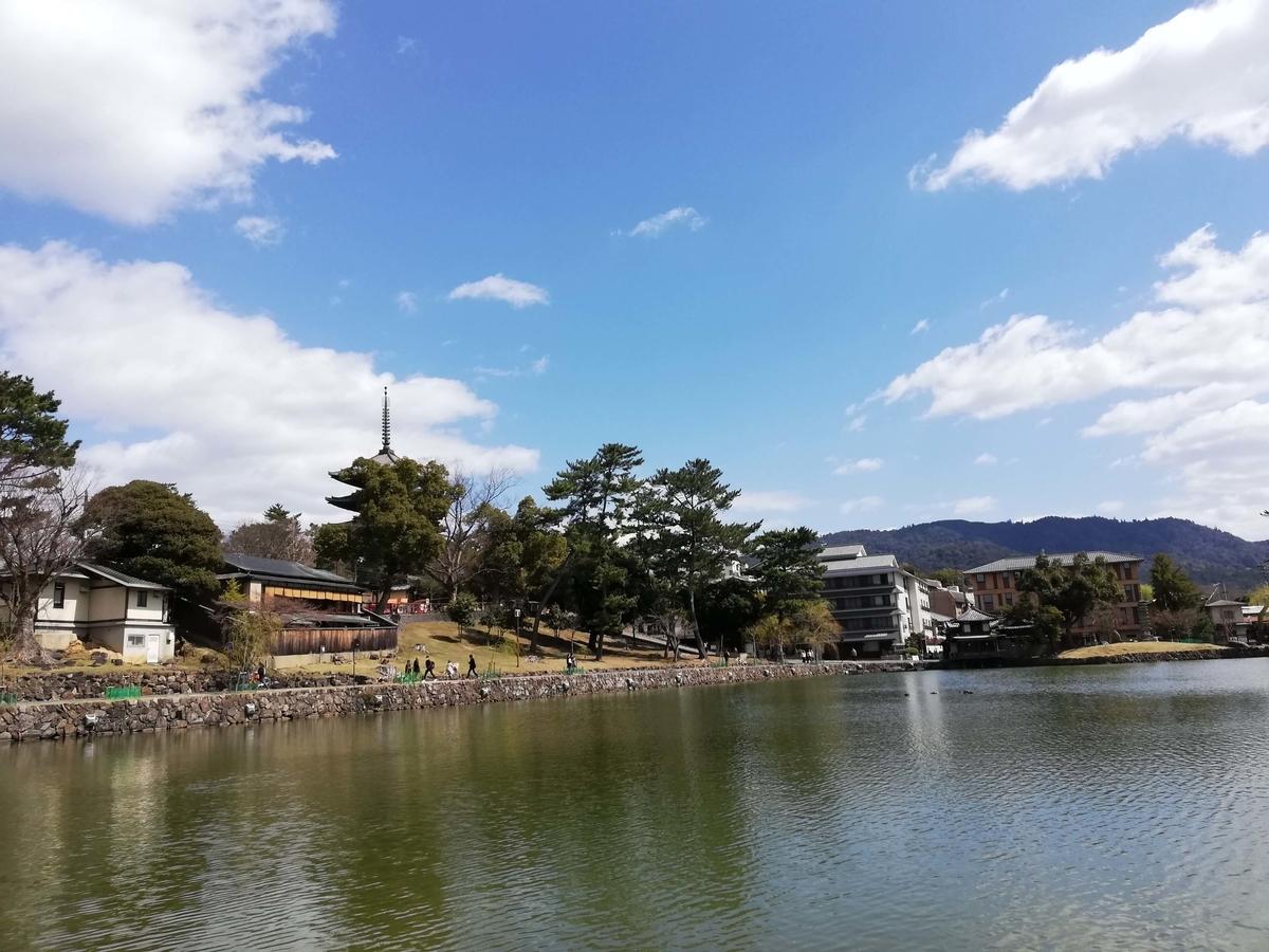 奈良県内でペットとお出かけ:猿沢池をワンコと散策