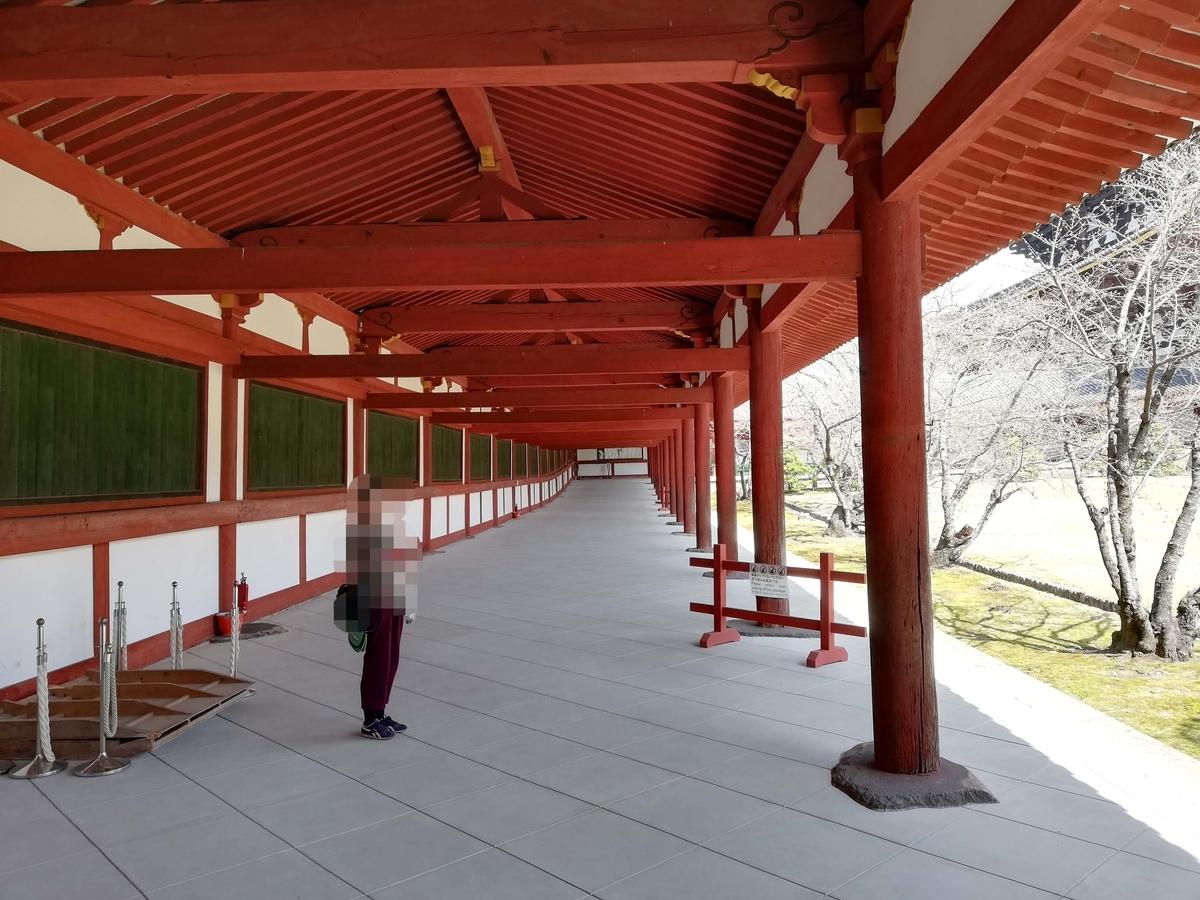 奈良県内でペットとお出かけ:東大寺 スロープの道