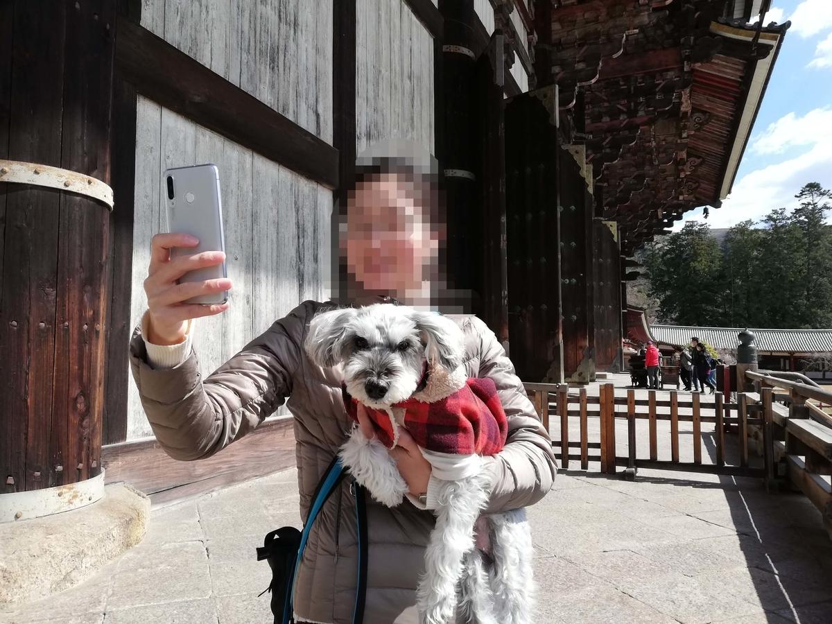 奈良県内でペットとお出かけ:東大寺 大仏殿 ワンコ 写真撮影