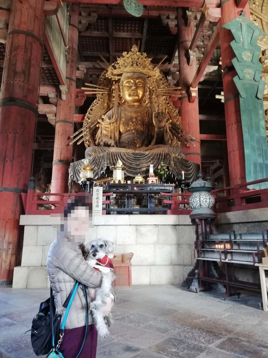 奈良県内でペットとお出かけ:ワンコと阿弥陀如来