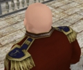 尉官 肩斜め ヴェネ