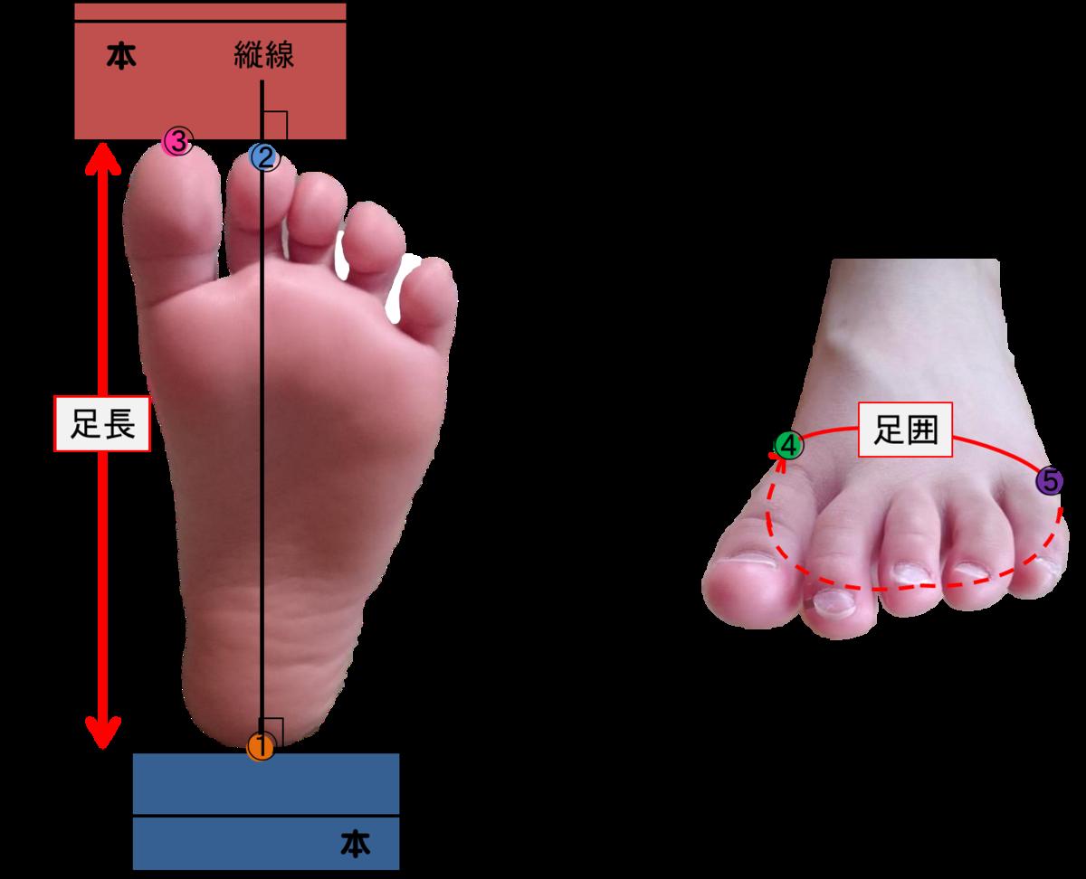 足測定のイメージ図