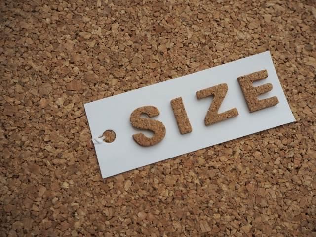 サイズ感のイメージ図