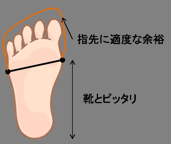 フィットした靴のイメージ図