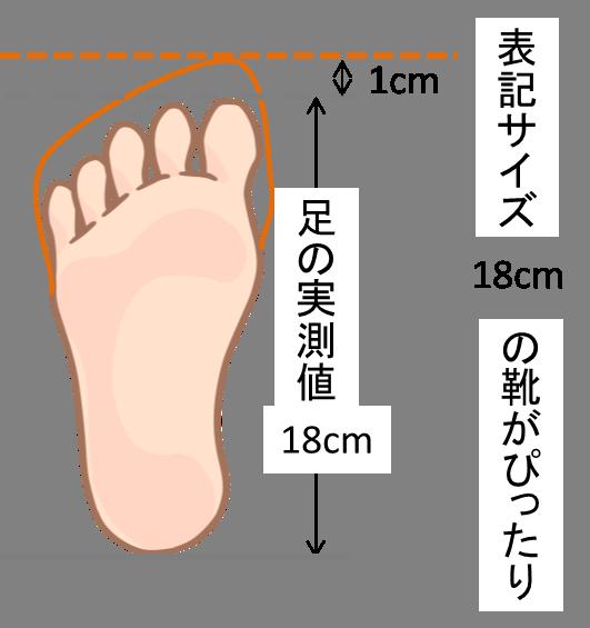 ピッタリサイズ靴のイメージ