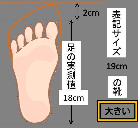 大きいサイズの靴のイメージ図
