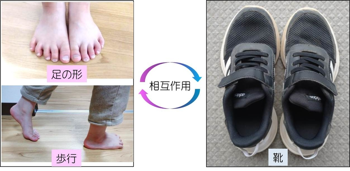 子供の足の形・歩行と子供靴の間の相互作用のイメージ図