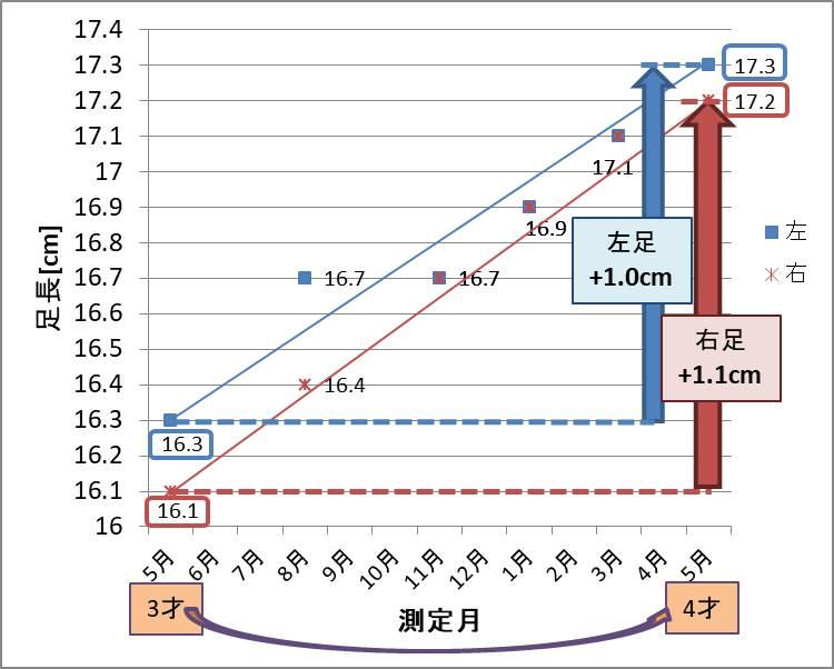 娘:1年間の足長成長グラフ