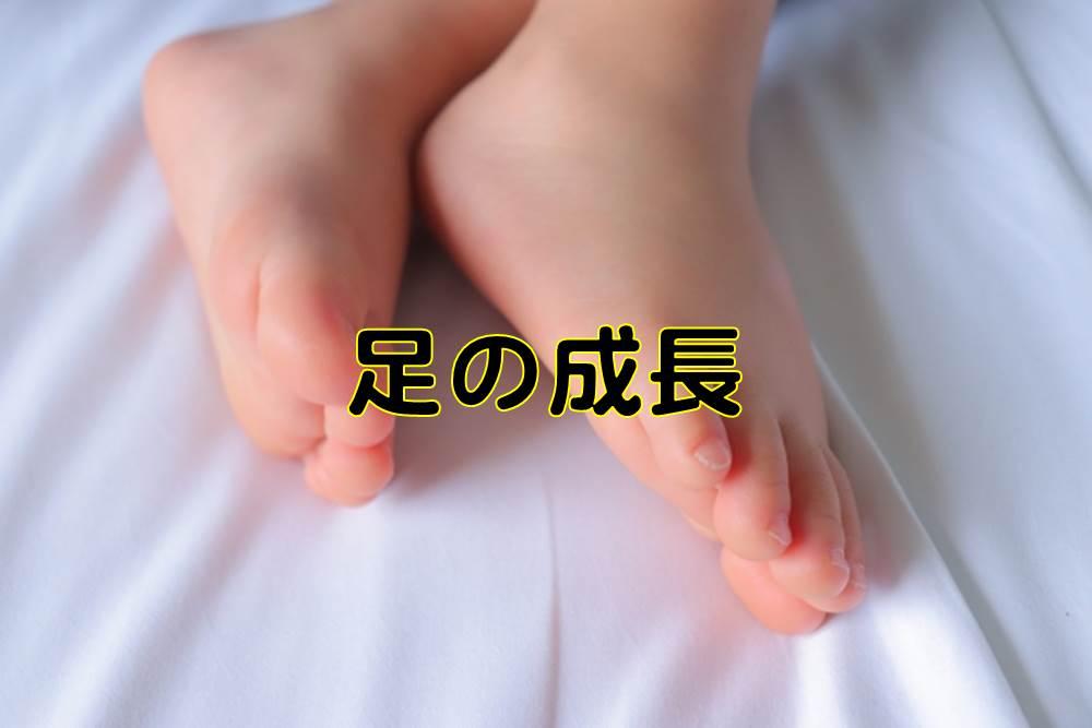 子供の足の成長量