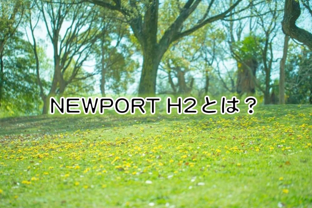KEENのキッズサンダル「NEWPORT H2」とは?のイメージ図