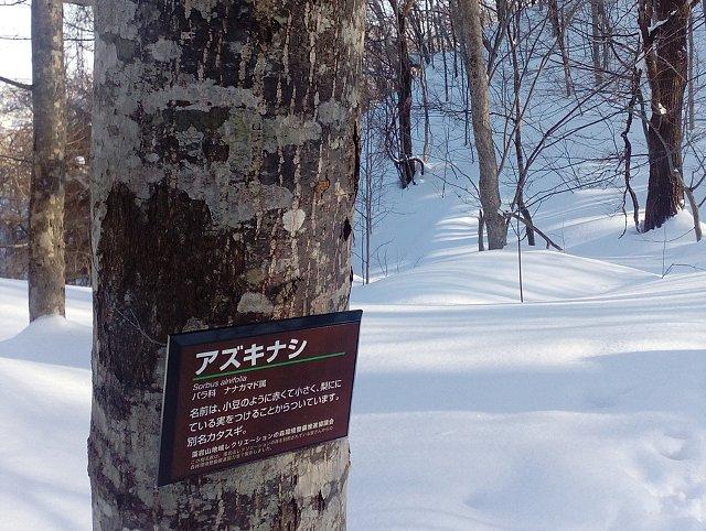 f:id:hankakusaizou:20170108152526j:plain
